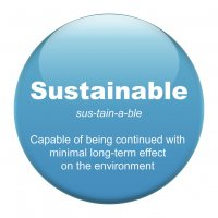 Sustainability Professional