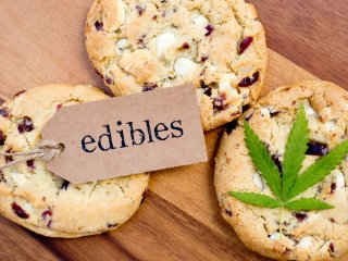 The Cannabis Kitchen